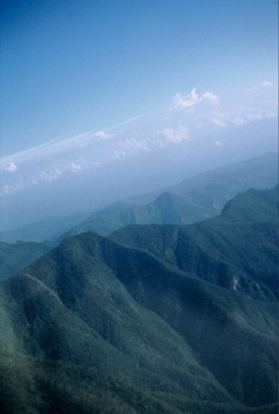 Голубые Горы Ямайки